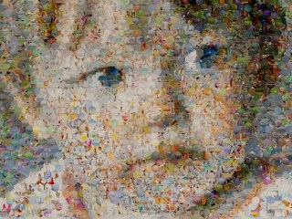 Holly as a Hexagons Photo Mosaic
